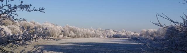 Leamington fields under a December frost